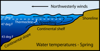 Seasons in the sea winds waves and currents in march northwest winds have caused upwelling bringing cold water up onto the continental shelf even though surface waters are colder than in winter ccuart Gallery